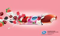 DAITY Ice Cream & Dairy Producer - Berries Sarin